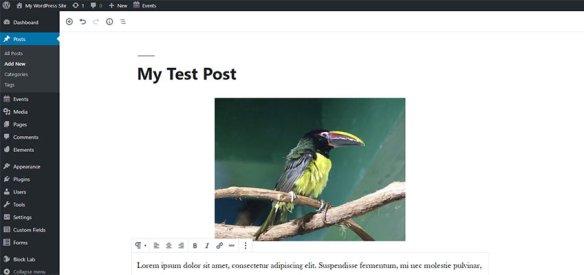 A sample post in WordPress.