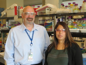 """Blake Simmons and Seema Singh of the Joint BioEnergy Institute (JBEI) discovered a renewable ionic or """"bionic"""" liquid made from lignin and hemicellulose that enabled a one-pot process for making cellulosic ethanol. (Photo by Roy Kaltschmidt)"""