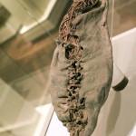 6500 yr old shoe [Oldest ever found] - Armenia