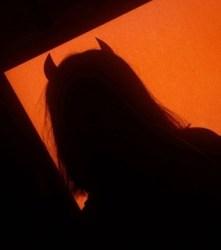 demon badass orange aesthetic and golden hour image #7729974 on Favim com