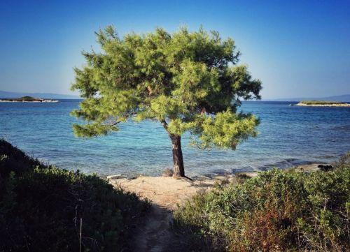 Chalkidiki_Sithonia_1 THING TO DO