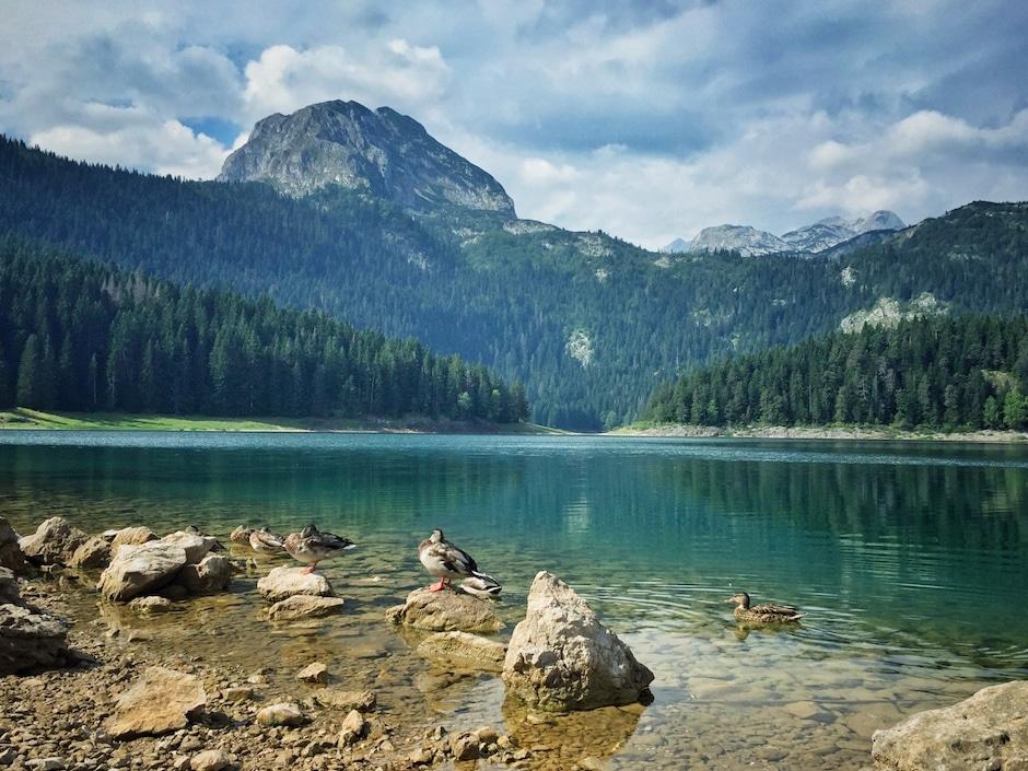 Balkan Trip Montenegro