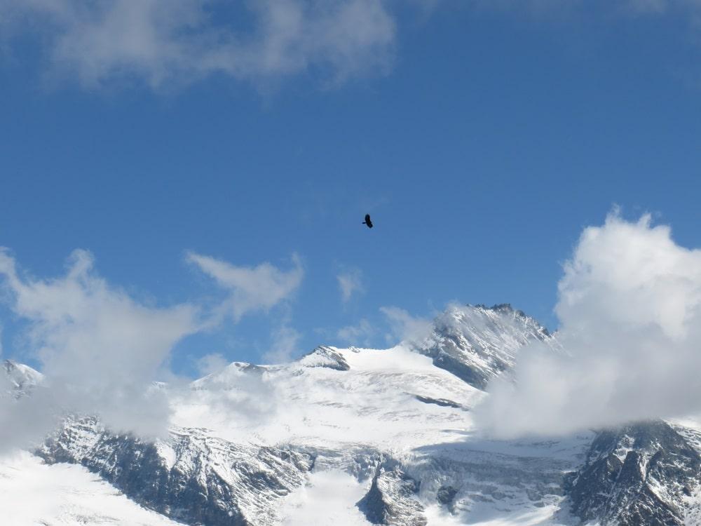 Adlerweg Wandern Tirol