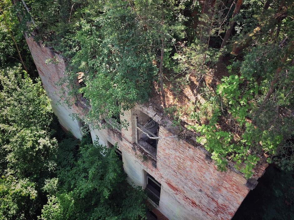 Beelitz Heilstätten Baumkronenpfad