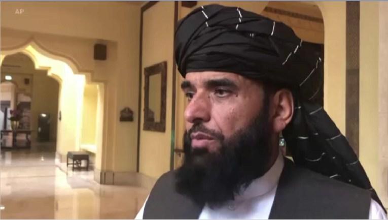 Suhail Shaheen, Taliban spokesperson