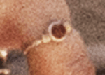 Detail shot of thin gold ring on the pinky finger, left hand for Scarlet Witch Wanda Maximoff in Avengers