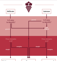 reaching the conclusion about the aroma intensity in wine [ 1332 x 1754 Pixel ]