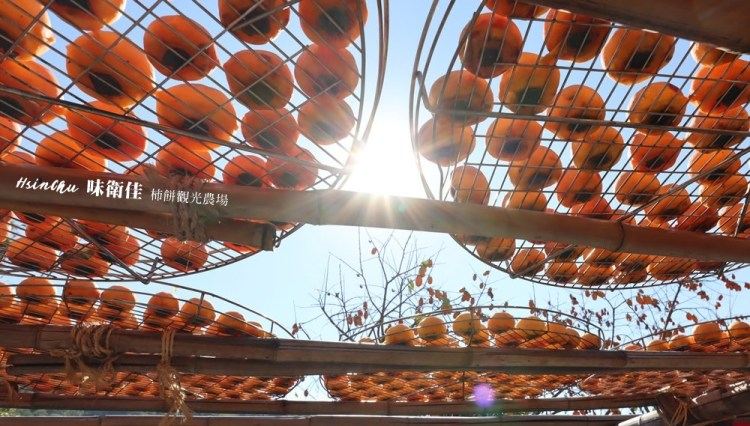 【新竹親子景點】味衛佳柿餅觀光農場,體驗難得一見的柿染DIY