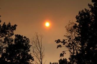 An orange sun.