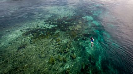 This is me snorkelling over the reef off Yenbeser