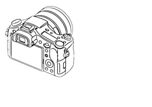 Body diagram without annotations (img): Sony Cybershot