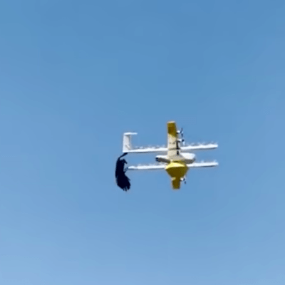 An angry raven nearly takes down delivery drone