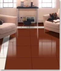 Terracotta Vitrified Tiles | Tile Design Ideas