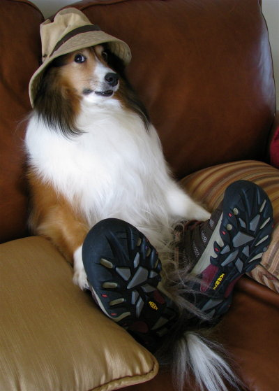 Ready for a run?  Dont forget your hat!