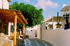 At the right time of day, the streets of Mykonos had wonderful color - the pale blue of the sky, the rich white of the walls, the green of the foliage, and the warm browns of the wood.
