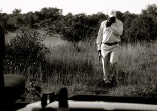 Marvin tracks a lion through bushveld.