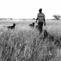 Go Tshoma (Hunting)