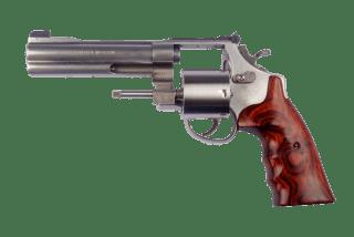 the gun against my temple - r c peris