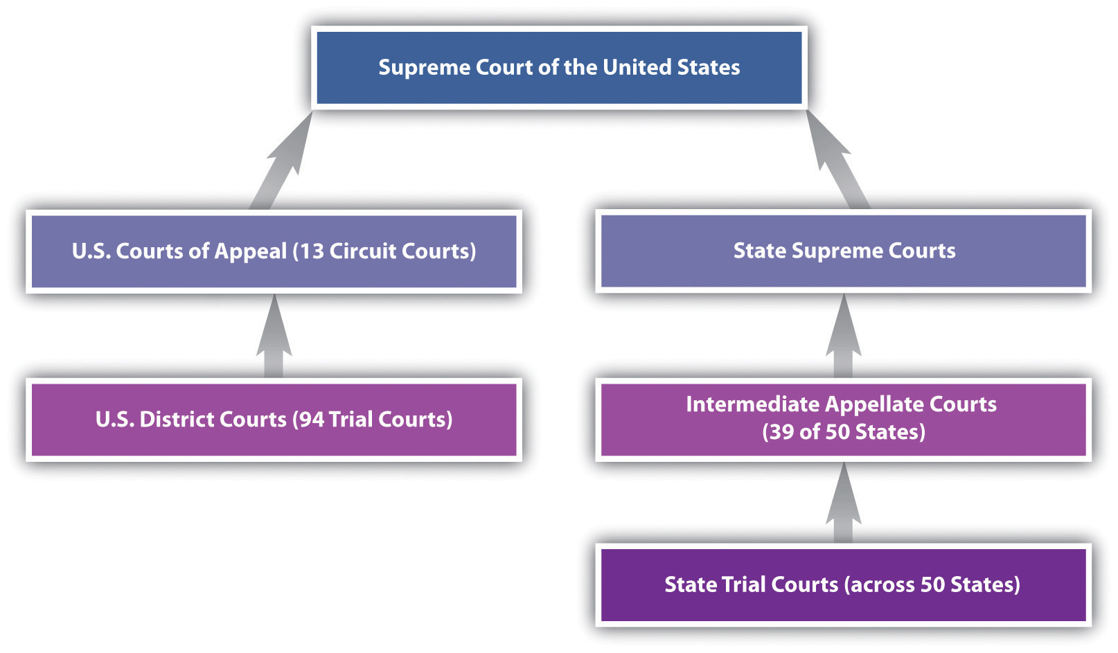 california court system diagram horse parts trial and appellate courts