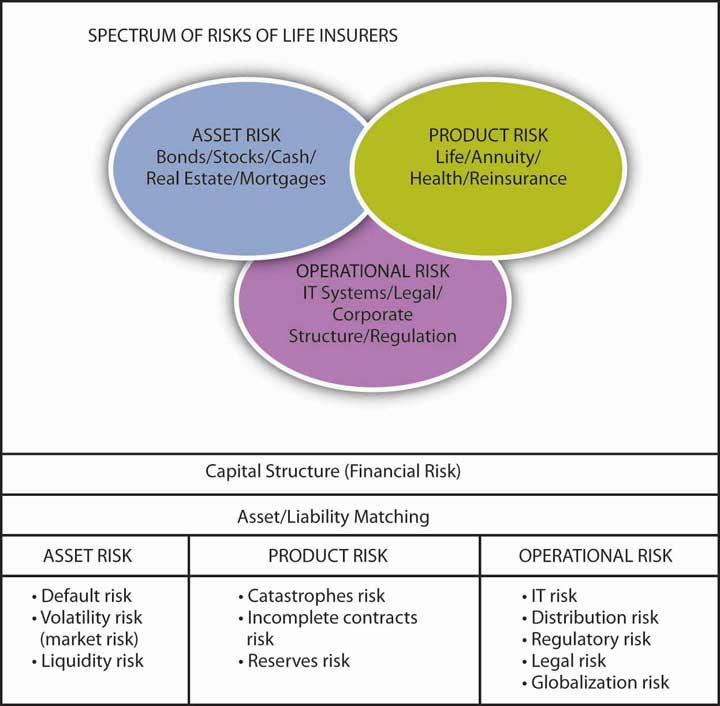 The Nature Of Risk Losses And Opportunities