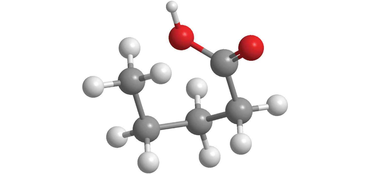 hight resolution of for each structural formula write the condensed formula and the name of the compound