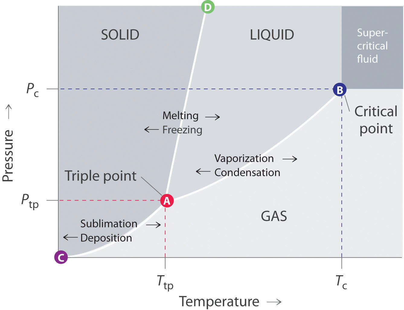 diagram of solid liquid and gas wrist hand unlabeled phase diagrams