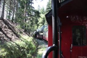 Auf der kurvenreichen Strecke kann man immer wieder den Zug fotografieren
