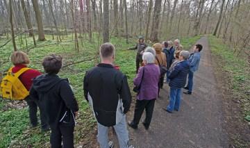 Revierförster Martin Opitz mit interessierten Viertelbewohnern beim Rundgang durch den Auwald: Foto: Andreas Reichelt