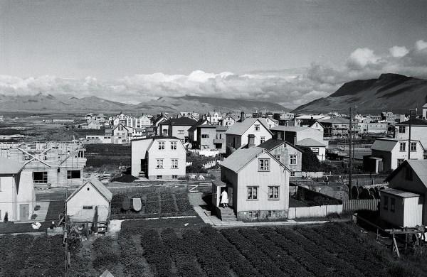 Yfirlitsmynd af neðri Skaga frá 1948. Þarna má sjá kartöflugarða við hvert einasta hús.