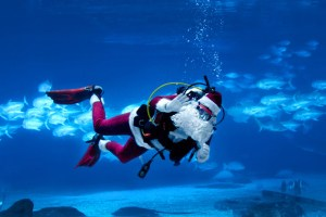 SCUBA-diving Santa.
