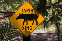 Tapir Crossing Sign - you can find these on various highways in Belize