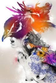 peacock-pez_web
