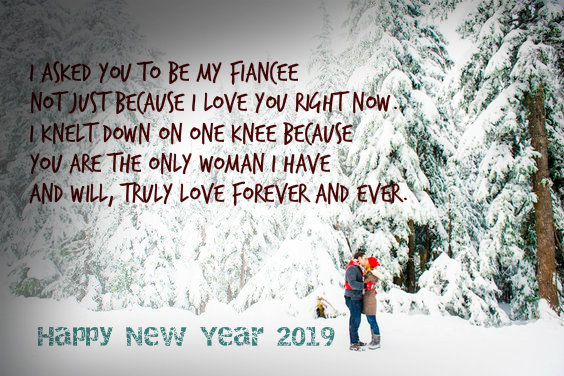 Romantic New Year Wishes for Fiance and Fiancee
