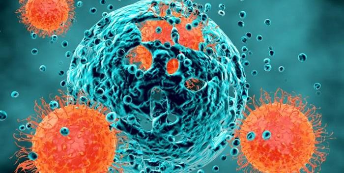 cancer - LA TERAPIA DE REGENERACIÓN CELULAR A BASE DE INDUCTORES EL MEJOR POTENCIADOR DEL SISTEMA INMUNOLÓGICO