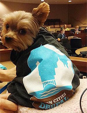 dog wearing twin cities drupal camp shirt