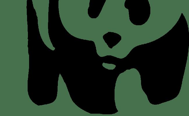 201harvey Just Another Wordpress Site