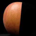 【技術】吸い込まれそう…光吸収率99.2%の水性アクリル塗料「黒色無双」が5月中にAmazonで販売開始  [暇人倶楽部★]