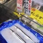 【北海道】サンマ初出漁、漁獲ゼロ 秋に向け厳しい予想…初物に1尾5980円の値札が付くことも  [ばーど★]