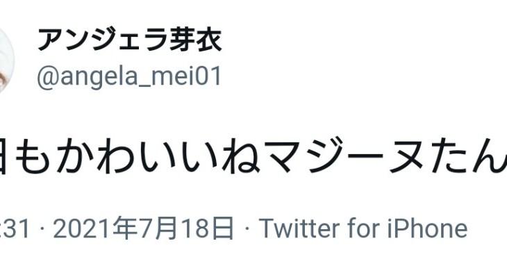 トロプリ→セイバー(合体SP)→ゼンカイ(合体SP)→村脱走→二度寝