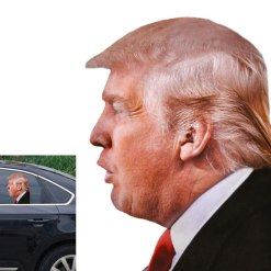 Toogod Trump 2020 Car Sticker Window Decal for Vehicles,Window Cling Ride with Trump (for Left Side)
