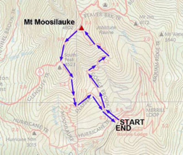 Hiking Mount Moosilauke