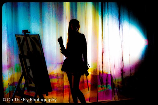 2013-02-06-1273-Curtains