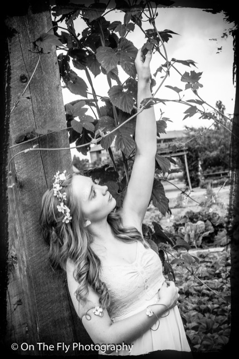 2014-06-22-0038-Fairy-esk-exposure