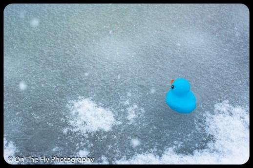 LD-Gerald-Snow-0092-2020-04-16