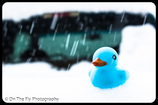LD-Gerald-Snow-0105-2020-04-16