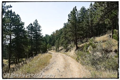 Horsetooth-Mountain-0012-2020-09-03