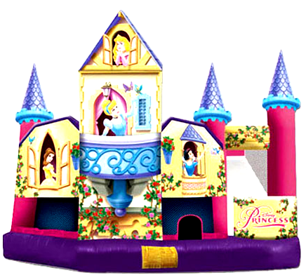 11Mega Princess bounce house combo