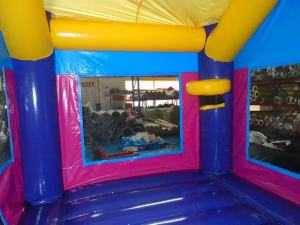 18Purple Passion bounce house