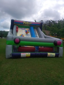 3Pinball Action Dry slide