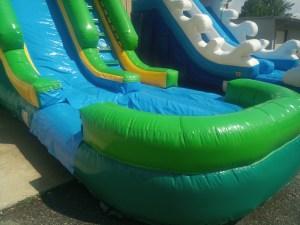 10Paradise Plunge Wet Dry slide